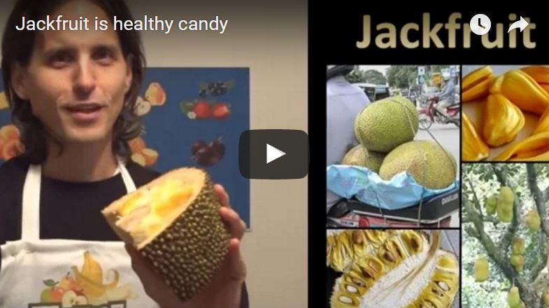 Video still - man holding jackfruit. Right side of image is collage of jackfruit images. Jackfruit can be three feet wide by 2 feet wide. Yellow nuggets inside white flesh.