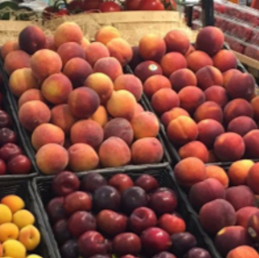 Grocery Display Of Peaches, Plums, Apricots