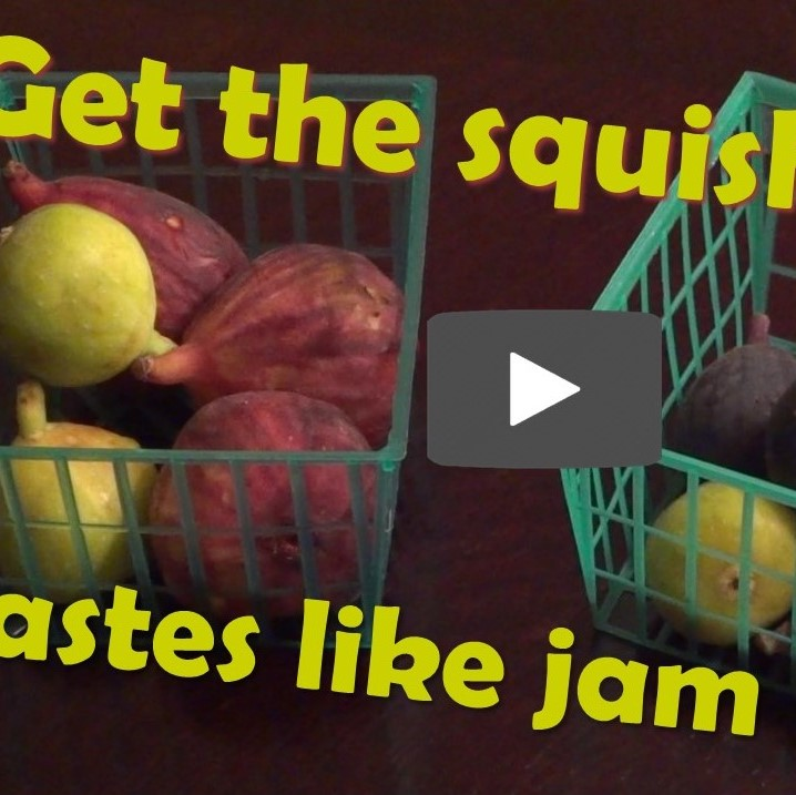 Get The Squishy Figs - Taste Like Jam - With Photo Of Figs In Plastic Baskets