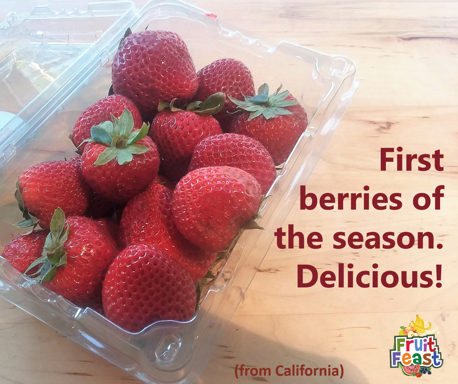 "Open carton of strawberries. ""First berries of the season. Delicious!"