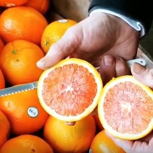Sliced Open Orange, Held By Man, With Knife In His Hand